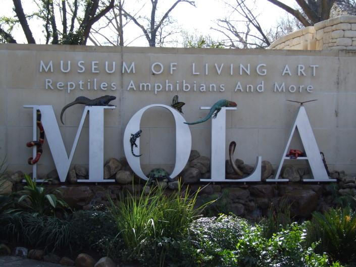 Museum of Living Art